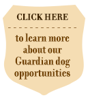 Click here to learn about our Guardian dog opportunities